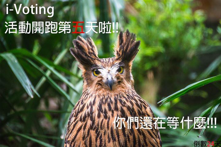 images on organization : 台北市立動物園Taipei Zoo